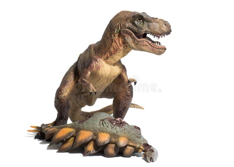 Τυραννόσαυρος rex με το νεκρό stegosaurus στο άσπρο υπόβαθρο στοκ φωτογραφία με δικαίωμα ελεύθερης χρήσης