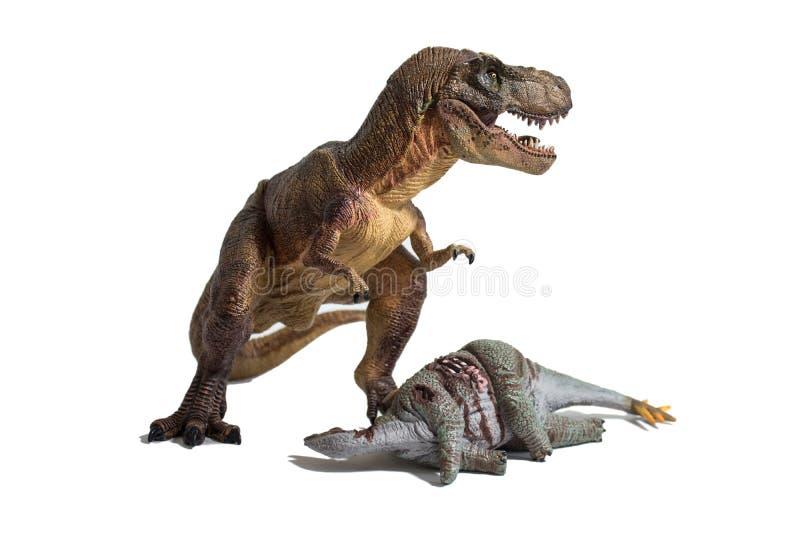 Τυραννόσαυρος rex με το νεκρό stegosaurus στο άσπρο υπόβαθρο στοκ εικόνα με δικαίωμα ελεύθερης χρήσης
