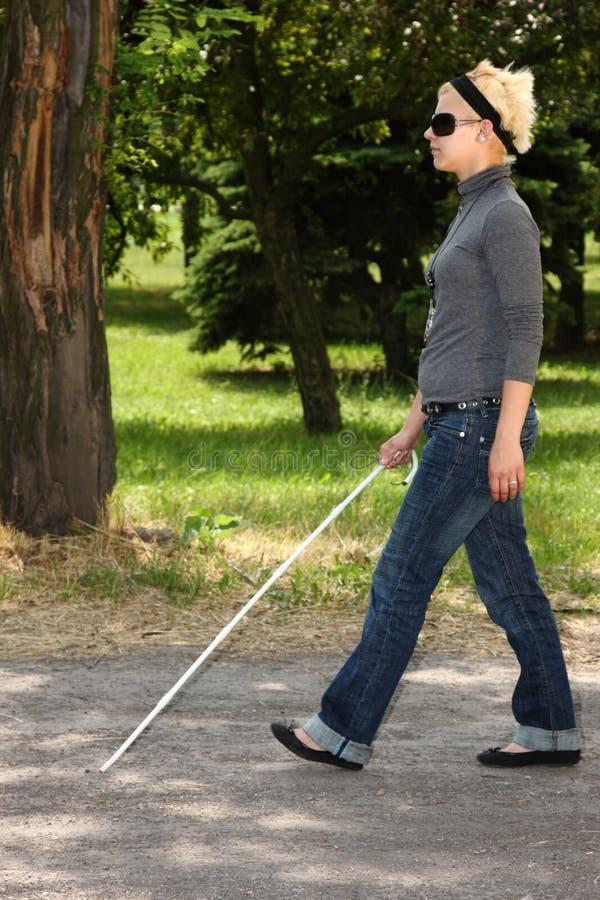 τυφλή γυναίκα διανυσματική απεικόνιση