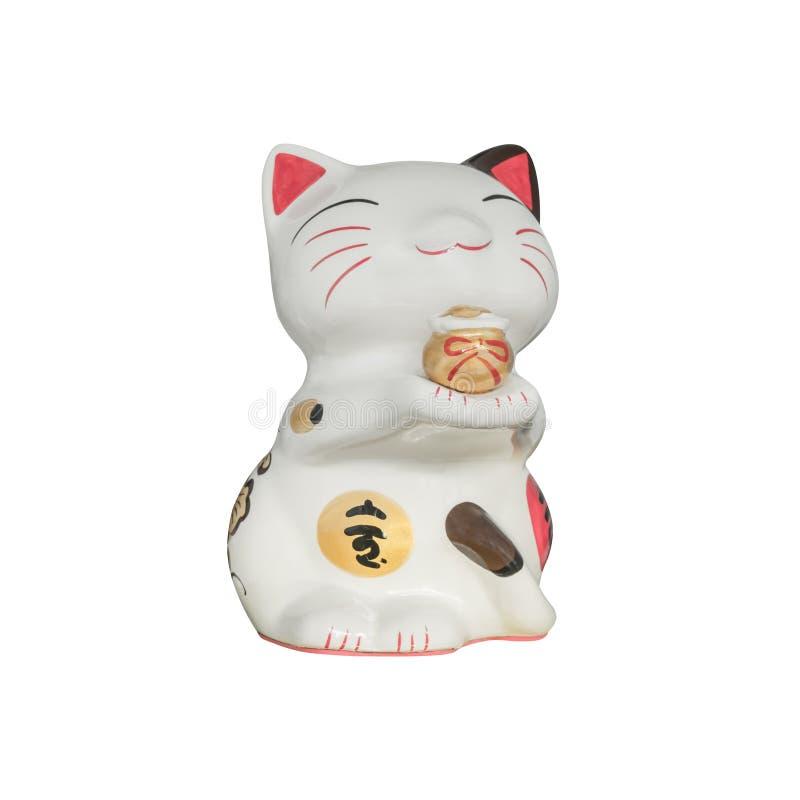 Τυχερή γάτα που απομονώνεται στο άσπρο υπόβαθρο στοκ εικόνες