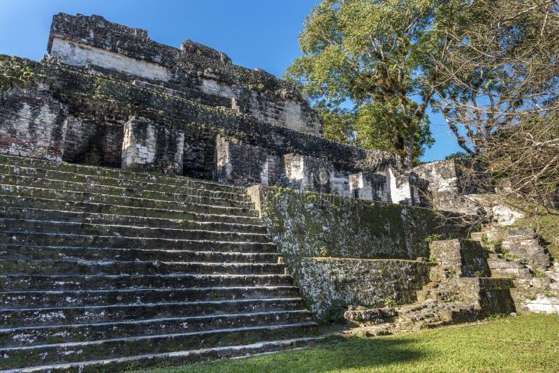 Των Μάγια καταστροφές ναών σε Tikal, Γουατεμάλα στοκ εικόνες με δικαίωμα ελεύθερης χρήσης