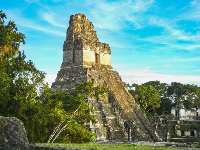 Των Μάγια ναοί του gran plaza ή του δημάρχου plaza στη tikal εθνική ισοτιμία στοκ εικόνα με δικαίωμα ελεύθερης χρήσης