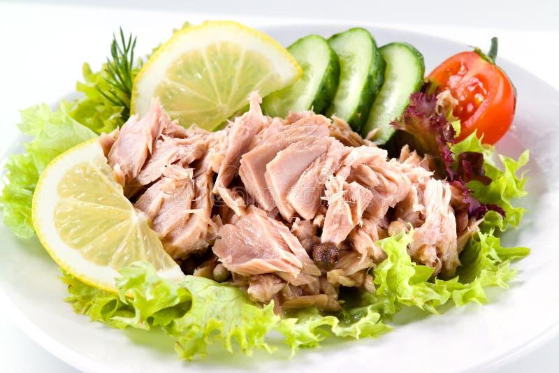 Τόνος με τη φυτική σαλάτα στοκ εικόνα