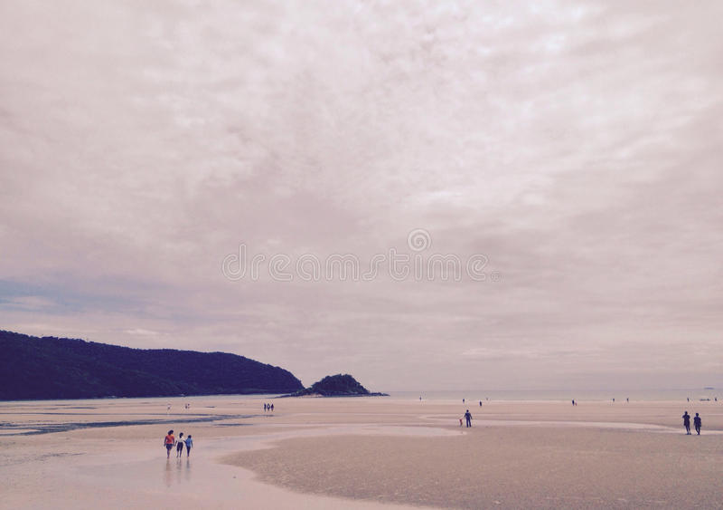 Τόνος σεπιών μοναξιάς, ηλιοβασίλεμα στην παραλία στοκ εικόνα με δικαίωμα ελεύθερης χρήσης