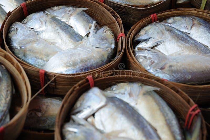 τόνος φρέσκιας αγοράς ψαρ στοκ εικόνες