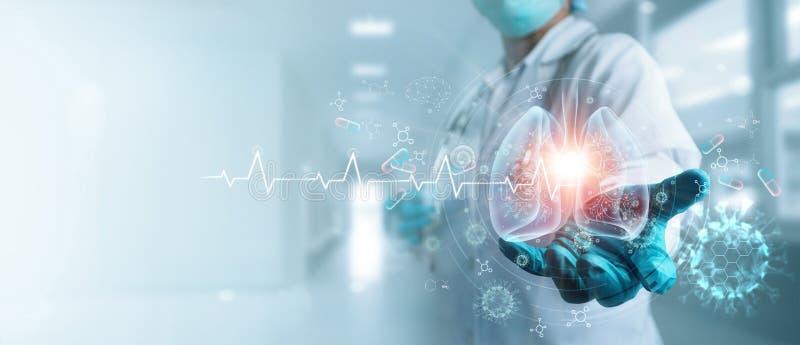 Υγεία και ιατρική, Covid-19, Γιατρός που κρατά και διαγνώνει τους εικονικούς ανθρώπινους πνεύμονες με κορονοϊούς απλωμένο στο εσω στοκ φωτογραφίες με δικαίωμα ελεύθερης χρήσης