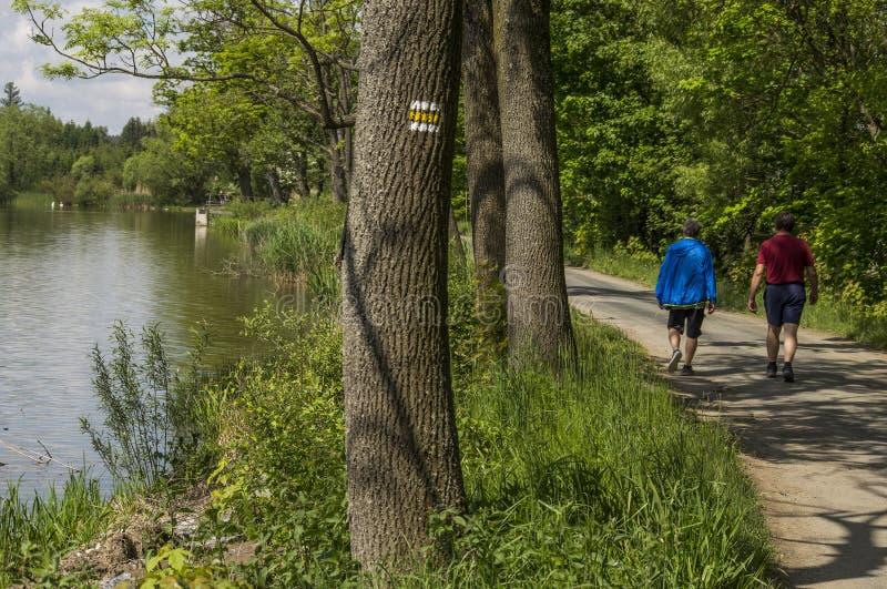 Υγιές περπάτημα από τη λίμνη στο Σαββατοκύριακο άνοιξη στοκ εικόνα