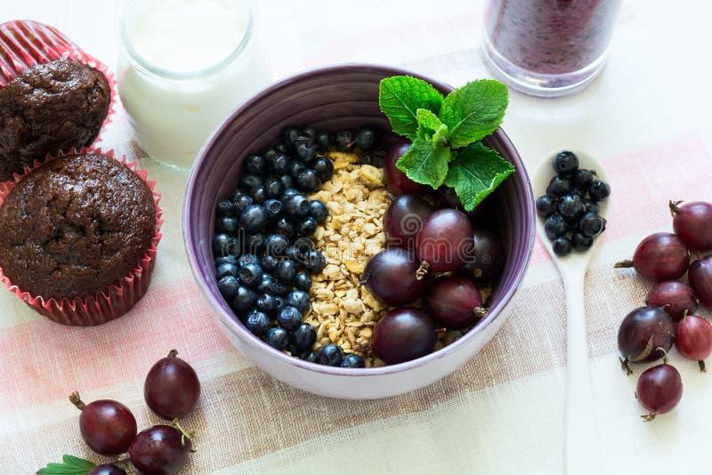 Υγιές πρόγευμα: muesli με το ριβήσιο και το βατόμουρο, το γιαούρτι, το καταφερτζή βακκινίων και muffins σοκολάτας στοκ φωτογραφία με δικαίωμα ελεύθερης χρήσης