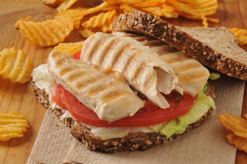Υγιές σάντουιτς κοτόπουλου στοκ φωτογραφία με δικαίωμα ελεύθερης χρήσης