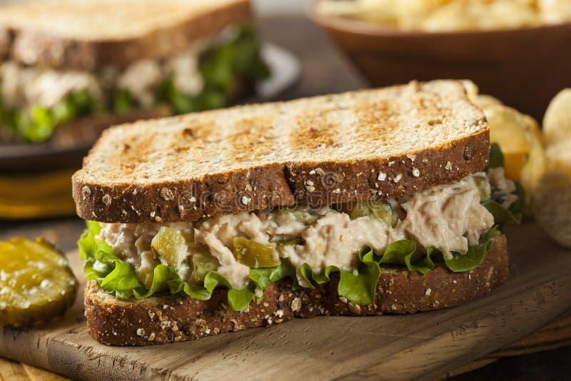 Υγιές σάντουιτς τόνου με το μαρούλι στοκ εικόνες