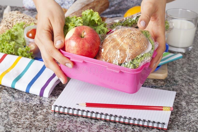 Υγιές σχολικό μεσημεριανό γεύμα στοκ εικόνες