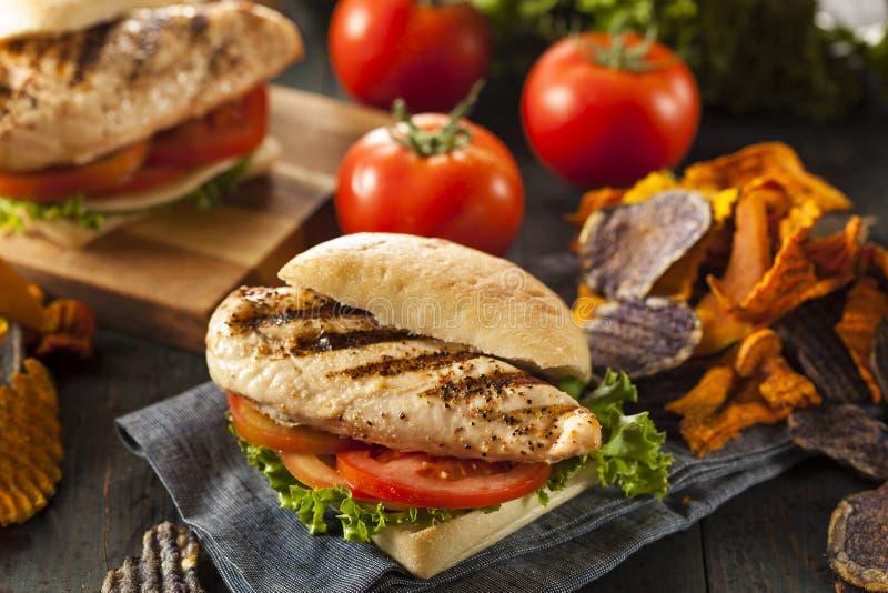 Υγιές ψημένο στη σχάρα σάντουιτς κοτόπουλου στοκ εικόνες