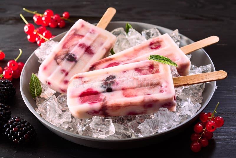 Υγιές fruity παγωμένο γιαούρτι popsicles στοκ εικόνα με δικαίωμα ελεύθερης χρήσης