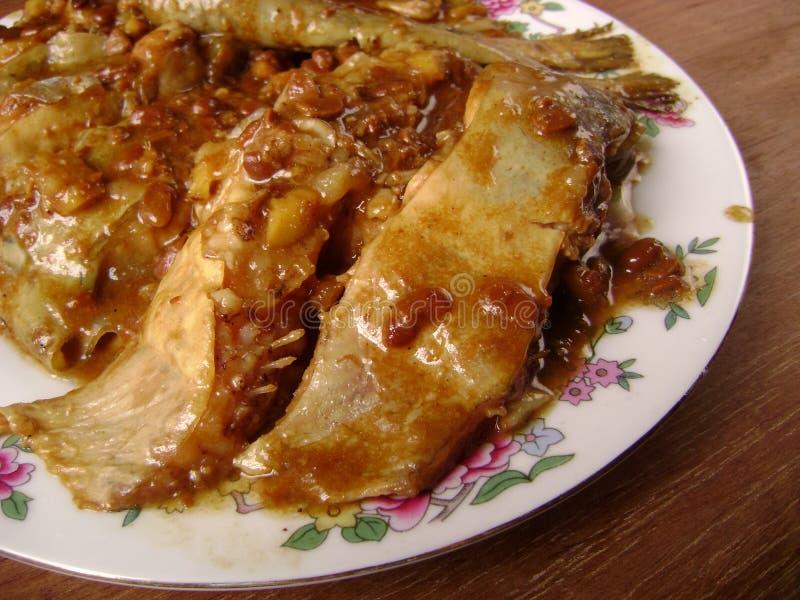 υγιές pangasius γεύματος ψαριών στοκ φωτογραφία με δικαίωμα ελεύθερης χρήσης