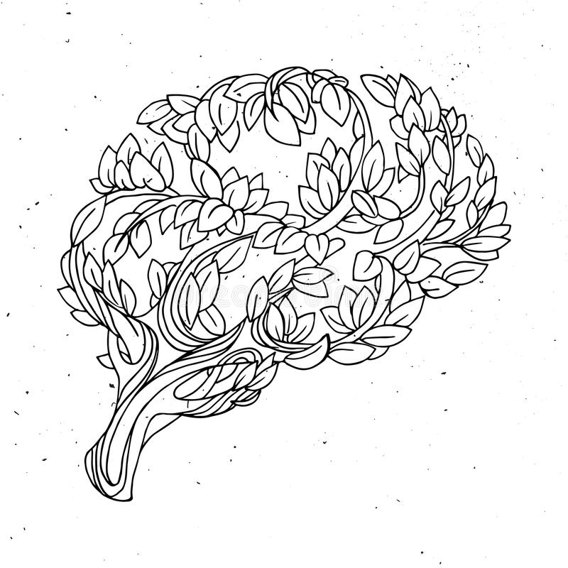 Υγιής απεικόνιση έννοιας εγκεφάλου διανυσματική Δέντρο και φύλλα με μορφή εγκεφάλου απεικόνιση αποθεμάτων