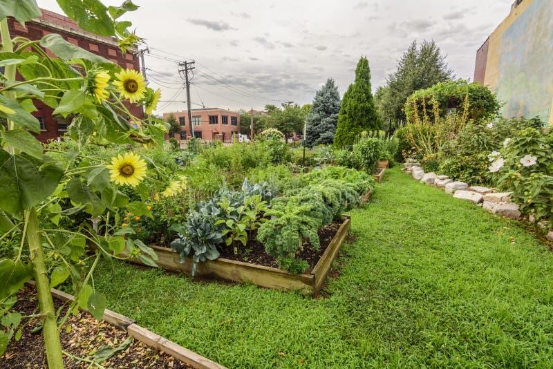 Υγιής καλά ο κήπος πόλεων που διατηρήθηκε από την περιβάλλουσα κοινότητα στοκ εικόνες