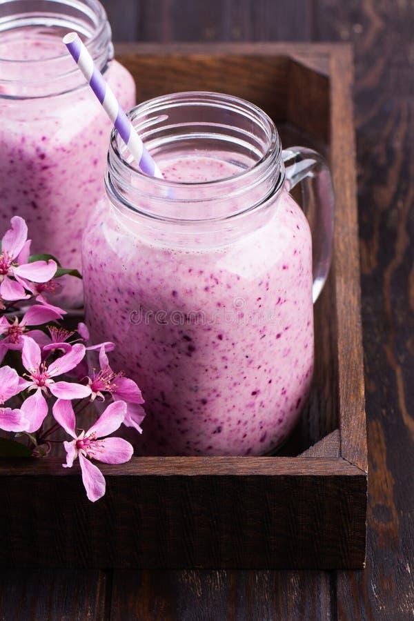 Υγιής καταφερτζής φραουλών σε μια κούπα βάζων κτιστών στοκ φωτογραφίες με δικαίωμα ελεύθερης χρήσης