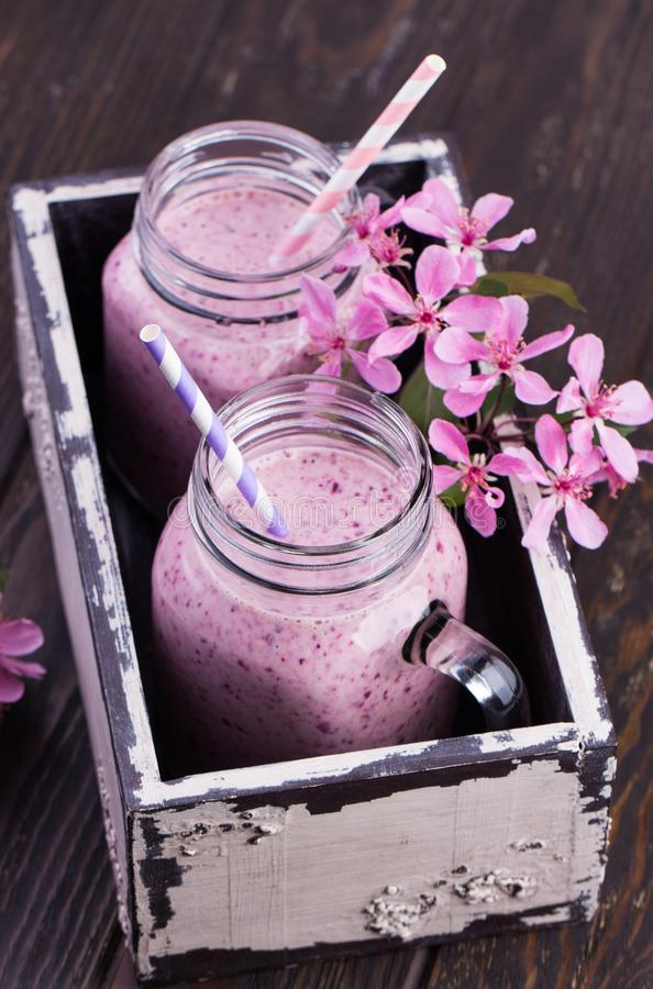 Υγιής καταφερτζής φραουλών σε μια κούπα βάζων κτιστών στοκ φωτογραφία με δικαίωμα ελεύθερης χρήσης