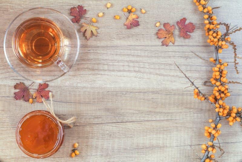 Υγιής καυτή έννοια ποτών φθινοπώρου Κλάδος της κοινής λευκαγκαθιάς στοκ φωτογραφίες με δικαίωμα ελεύθερης χρήσης