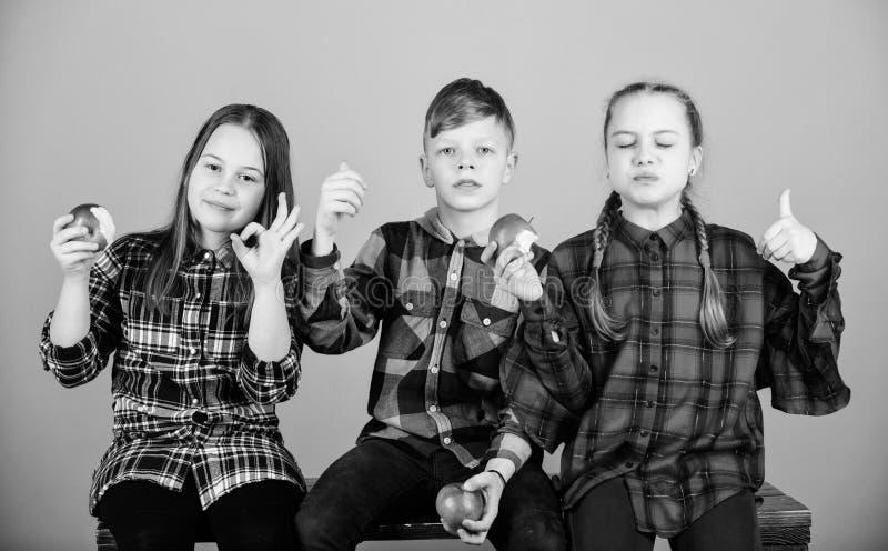 Υγιής να κάνει δίαιτα και βιταμινών διατροφή Οι φίλοι αγοριών και κοριτσιών τρώνε το πρόχειρο φαγητό μήλων χαλαρώνοντας Έννοια σχ στοκ εικόνες