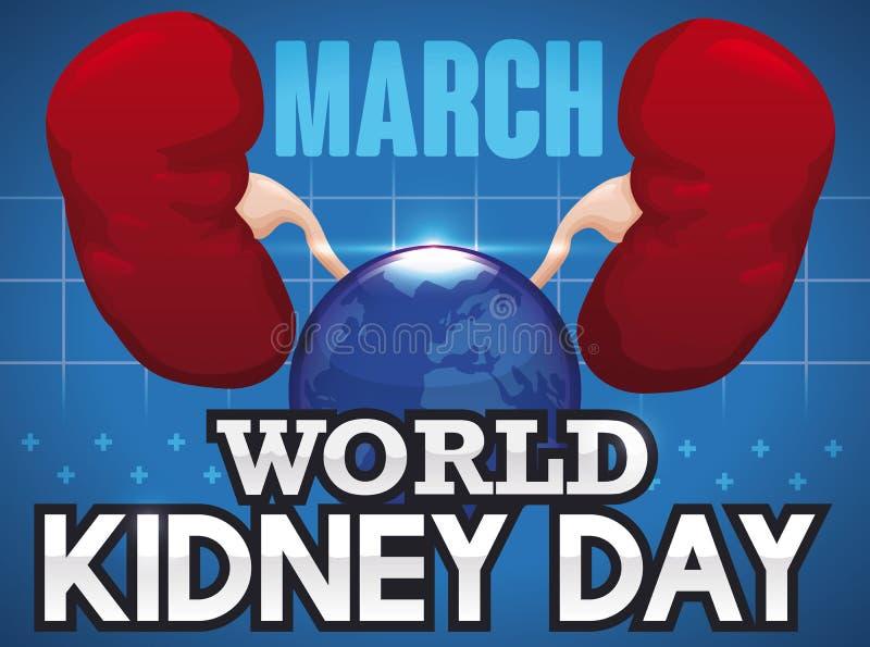 Υγιής νεφρά, σφαίρα και χαιρετισμός για την ημέρα παγκόσμιων νεφρών, διανυσματική απεικόνιση ελεύθερη απεικόνιση δικαιώματος