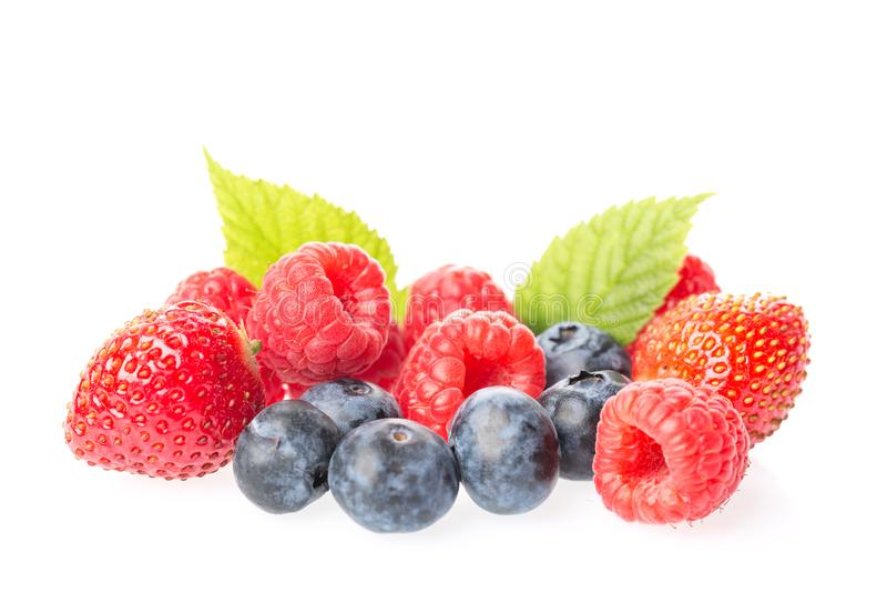 Υγιής ομάδα μούρων τροφίμων Μακρο πυροβολισμός των φρέσκων σμέουρων, των βακκινίων, των βατόμουρων και της φράουλας με τα φύλλα π στοκ εικόνες με δικαίωμα ελεύθερης χρήσης