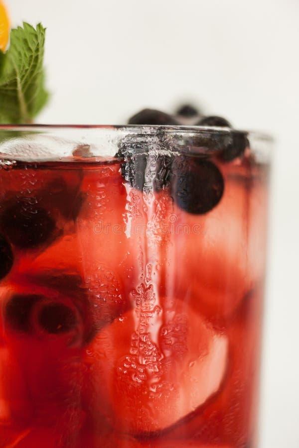 Υγιής τρόπου ζωής έννοια ποτών φρούτων αναζωογονώντας στοκ εικόνες με δικαίωμα ελεύθερης χρήσης