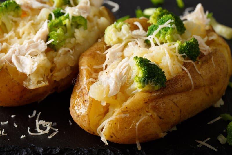 Υγιής ψημένη πατάτα με το μπρόκολο, το κοτόπουλο, τα κρεμμύδια και το τυρί γ στοκ εικόνες