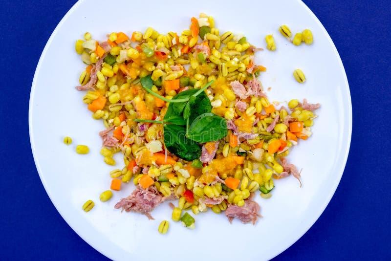 Υγιής Hock ζαμπόν θερινή σαλάτα στοκ εικόνες με δικαίωμα ελεύθερης χρήσης