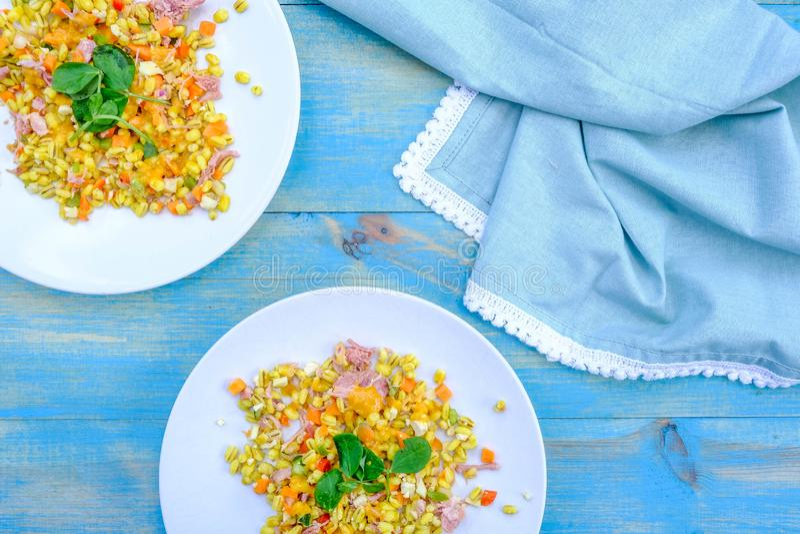 Υγιής Hock ζαμπόν θερινή σαλάτα στοκ φωτογραφίες με δικαίωμα ελεύθερης χρήσης