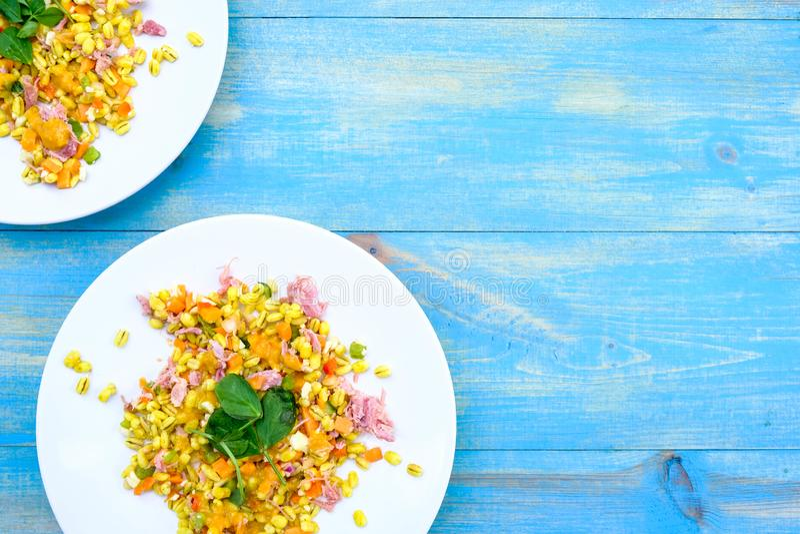 Υγιής Hock ζαμπόν θερινή σαλάτα στοκ εικόνα με δικαίωμα ελεύθερης χρήσης