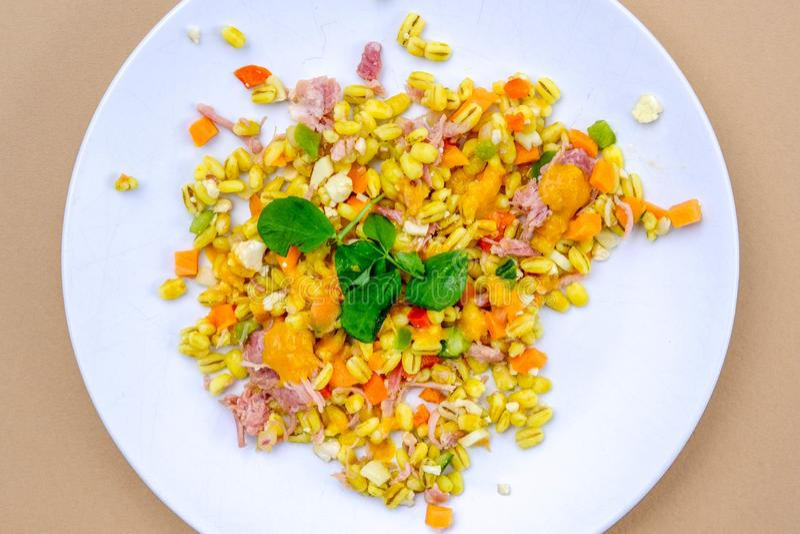 Υγιής Hock ζαμπόν θερινή σαλάτα στοκ φωτογραφία