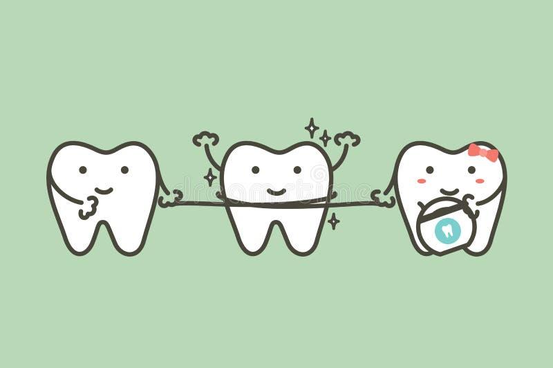 Υγιή δόντια που καθαρίζουν το φίλο του από το οδοντικό νήμα απεικόνιση αποθεμάτων