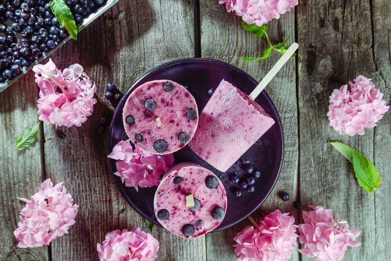 Υγιή θερινά επιδόρπια τοπ άποψης Το παγωτό popsicles με τη μαύρη σταφίδα, τη φρέσκα μέντα και τα μούρα, ρόδινο wisteria ανθίζει σ στοκ εικόνα με δικαίωμα ελεύθερης χρήσης