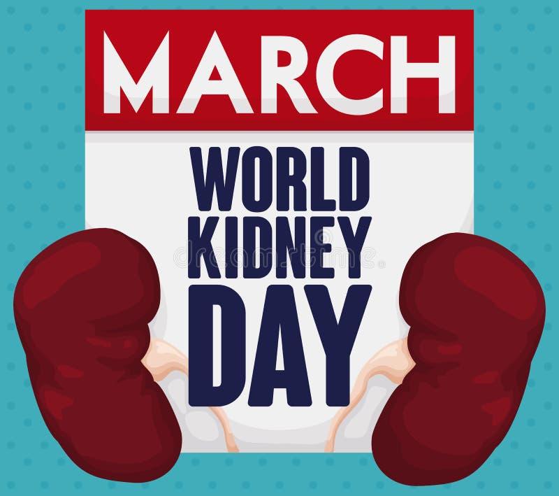 Υγιή νεφρά και ημερολόγιο για τον εορτασμό ημέρας παγκόσμιων νεφρών, διανυσματική απεικόνιση διανυσματική απεικόνιση