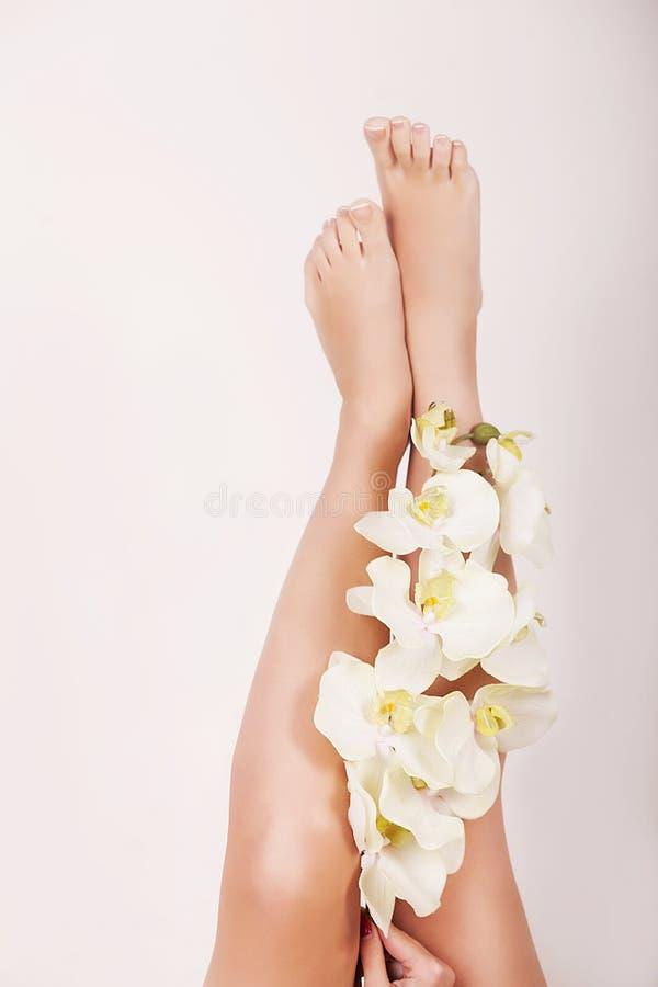 υγιή πόδια SPA Skincare Μακριά πόδια και χέρια γυναικών στοκ εικόνες