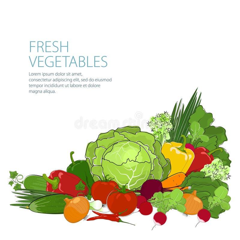 Υγιή τρόφιμα, φρέσκα ακατέργαστα λαχανικά διανυσματική απεικόνιση