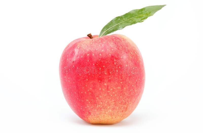 Υγιή τρόφιμα. Φρέσκο κόκκινο μήλο με το πράσινο φύλλο. στοκ εικόνα με δικαίωμα ελεύθερης χρήσης