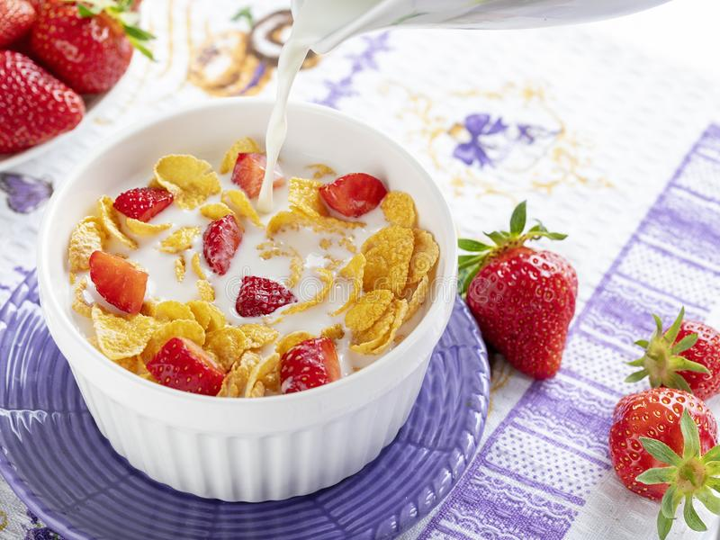 Υγιείς δημητριακά και φράουλες προγευμάτων στοκ εικόνα με δικαίωμα ελεύθερης χρήσης