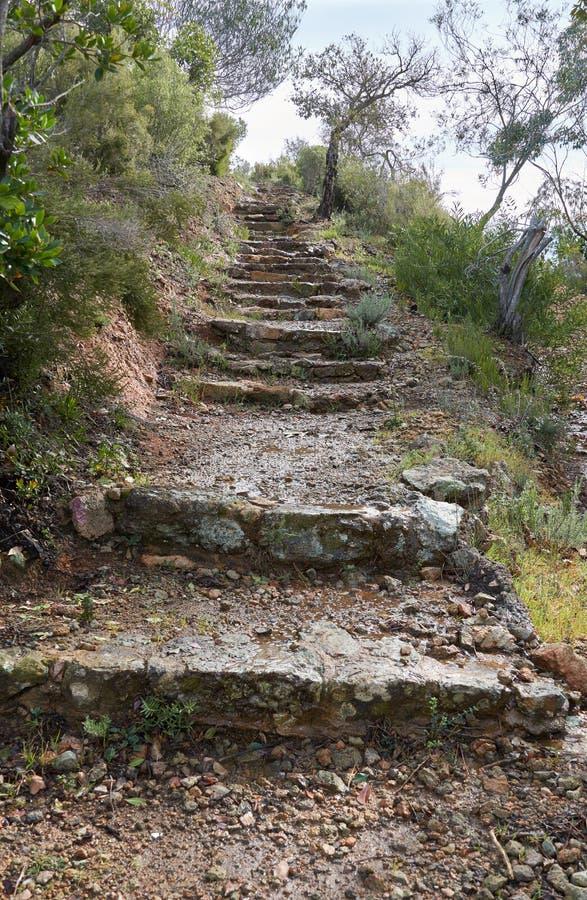 Υγρά βήματα πετρών στο λόφο στοκ φωτογραφία με δικαίωμα ελεύθερης χρήσης