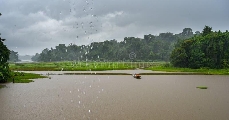 Υγρή αλιεία στα τροπικά δάση του Παναμά στοκ φωτογραφία