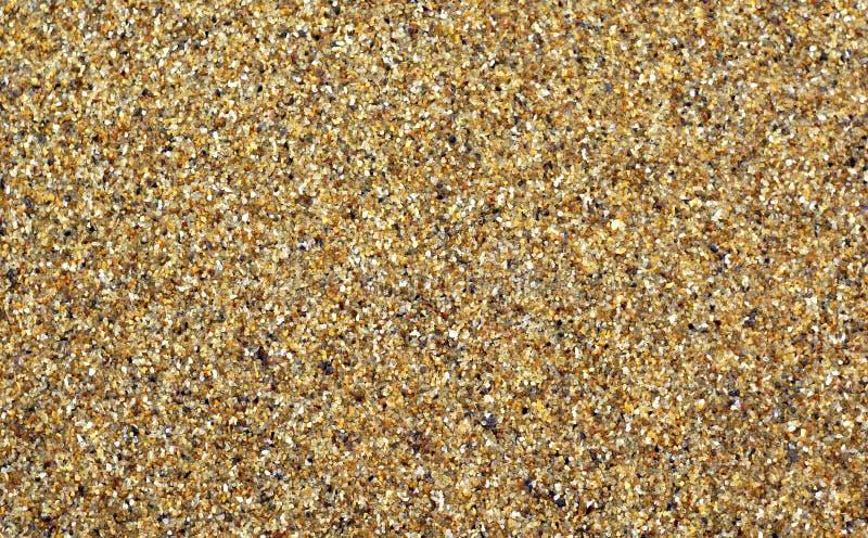Υγρή χονδροειδής άμμος της θάλασσας Υπόβαθρο στοκ εικόνα