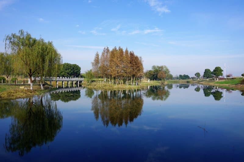 Υγρότοπος από τη λίμνη Taihu στοκ εικόνα με δικαίωμα ελεύθερης χρήσης