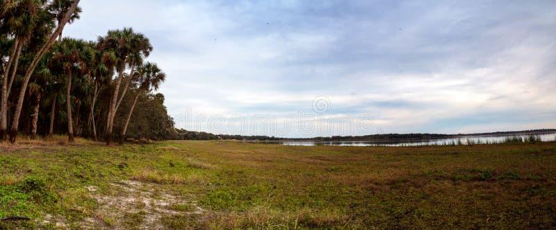 Υγρότοπος και έλος στο κρατικό πάρκο ποταμών Myakka στοκ φωτογραφία με δικαίωμα ελεύθερης χρήσης