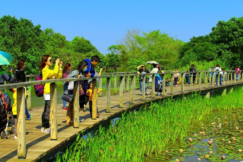 υγρότοπος πάρκων του Χο&gamm στοκ εικόνα