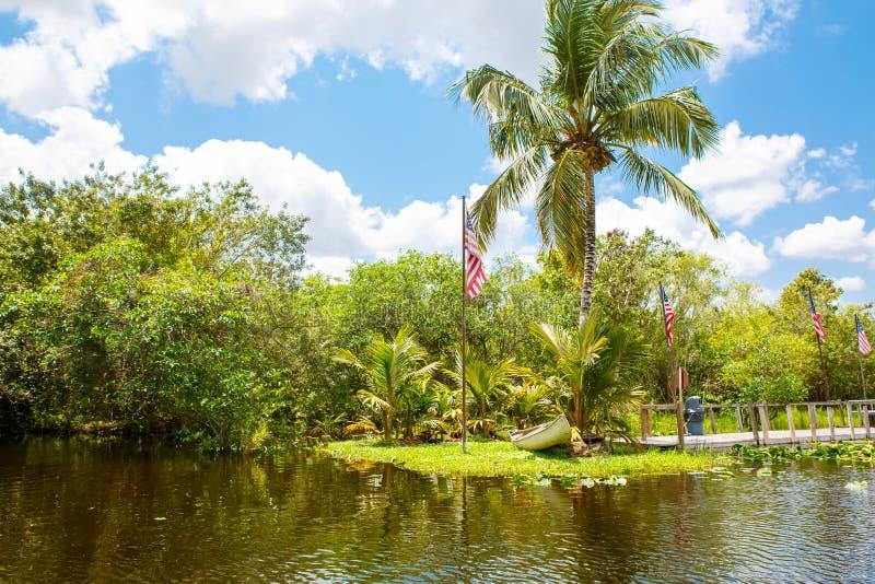 Υγρότοπος της Φλώριδας, γύρος Airboat στο εθνικό πάρκο Everglades στις ΗΠΑ στοκ φωτογραφία με δικαίωμα ελεύθερης χρήσης