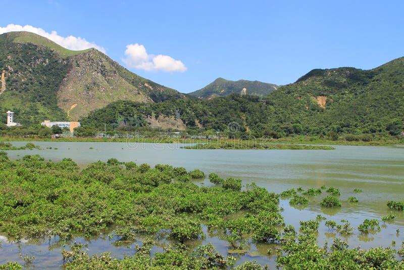 υγρότοπος Tai Ο στο ψαροχώρι στοκ φωτογραφίες με δικαίωμα ελεύθερης χρήσης