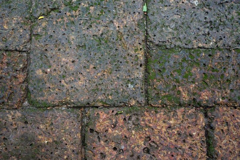 Υγρό σκουριασμένο τούβλινο laterite πετρών υπόβαθρο σχεδίων φραγμών πεζοδρομίων με την πράσινη λειχήνα στοκ εικόνα με δικαίωμα ελεύθερης χρήσης