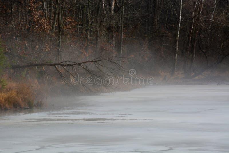 Υδρονέφωση καλυμμένη στην πάγος λίμνη στοκ εικόνα με δικαίωμα ελεύθερης χρήσης