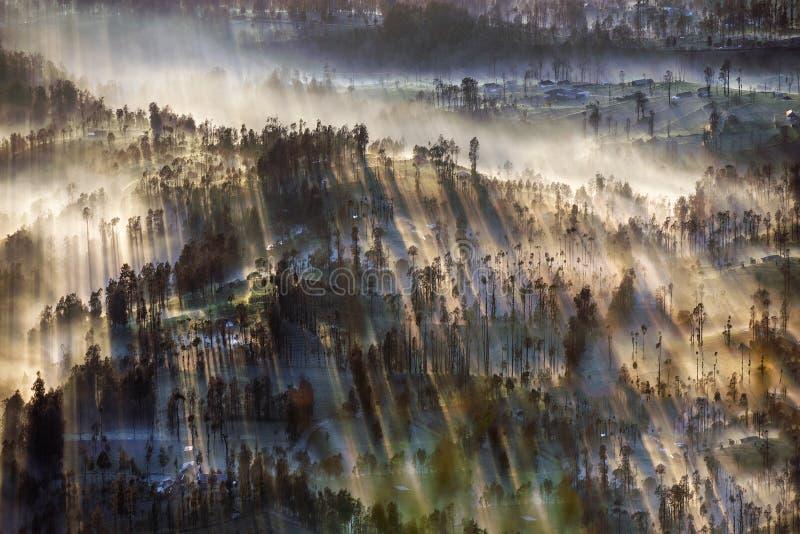 Υδρονέφωση που ρέει πέρα από το χωριό Cemoro Lawang το πρωί που βρίσκεται βόρειο-ανατολικά της ΑΜ Bromo, Ινδονησία στοκ εικόνα με δικαίωμα ελεύθερης χρήσης